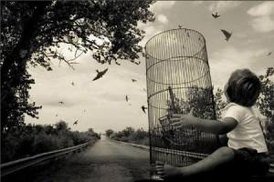 Δεν υπάρχει όμορφο κλουβί. Τα πουλιά και η σκέψη ζουν μόνο Ελεύθερα.