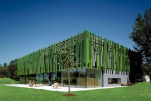 Πράσινο νηπιαγωγείο