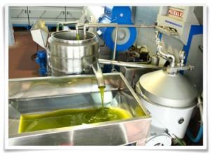 olive-press2