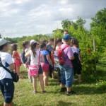 Αμερικανική Γεωργική Σχολή 3 Ιουνίου 2014 014