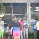 Αμερικανική Γεωργική Σχολή 3 Ιουνίου 2014 023