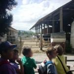 Αμερικανική Γεωργική Σχολή 3 Ιουνίου 2014 026