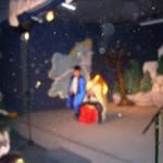 Χριστουγεννιάτικη γιορτή 2014 029
