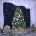 Χριστουγεννιάτικος στολισμός σχολείου Δεκ 2014 001