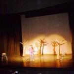 9 Ιουνίου 2015 Φεστιβάλ Παιδείας ο Σαίξπηρ στα μέτρα μας 009