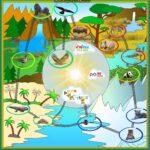Κατεβάστε, εκτυπώστε και παίξτε το παιχνίδι ΝώεLand που δημιουργήθηκε από τους 19Robogators Junior, ως project του FLL animal allies