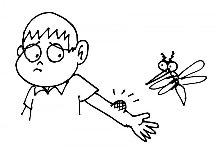 Mosquito Bites Clip Art