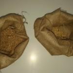σιτάρι και κριθάρι
