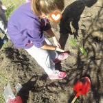 ετοιμάζοντας το λαχανόκηπο