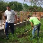 φυτεύουν οι γονείς δέντρα