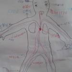 στο περίγραμμα από το σώμα ενός αγοριού ,μάθαμε τα πάντα για το σώμα μας