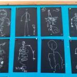 Mιλήσαμε για το σώμα μας για τα όργανα που έχουμε μέσα μας και σχεδιάσαμε τους σκελετούς μας