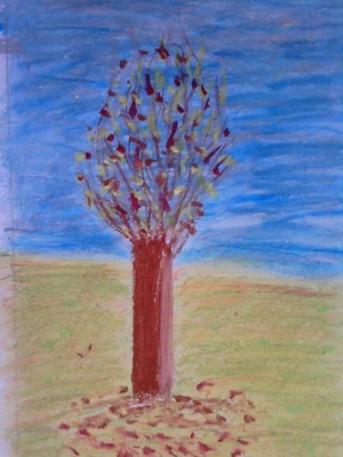 trees seas 005