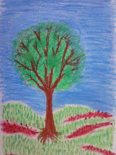 trees seas 008