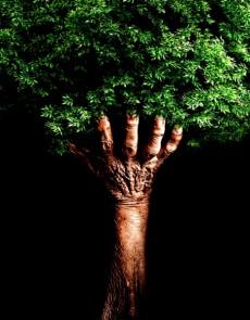 HUMANITY & NATURE