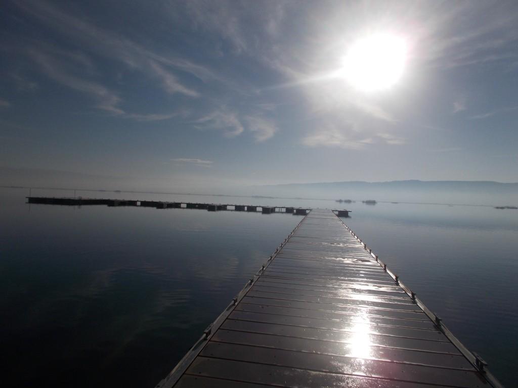 Ο ήλιος που πριν από λίγη ώρα σαν να εξήλθε της λίμνης, οι πρωινοί υδρατμοί, η μόλις διακριτή ομίχλη... Το μάθημα για τις λίμνες με φυσικό βιβλίο...