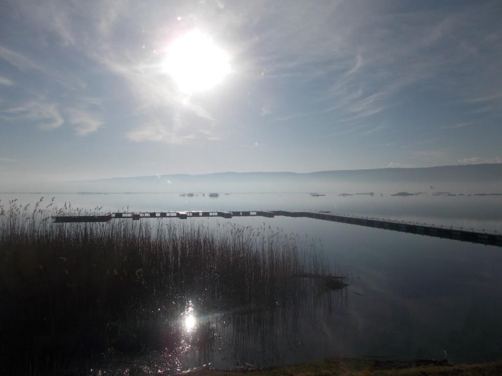"""Λίγο μετά της 9 το πρωί η λίμνη Χειμαδίτιδα. Ένα εντυπωσιακό, """"αγγελοπουλικό"""" σκηνικό! Μας ενθουσίασε όλους."""