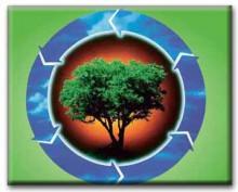 Οικολογία - eko