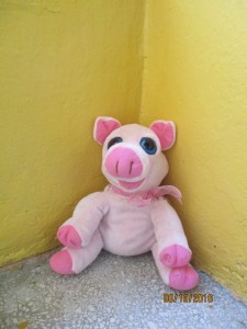 Miss Piggy - A and B Class Mascot