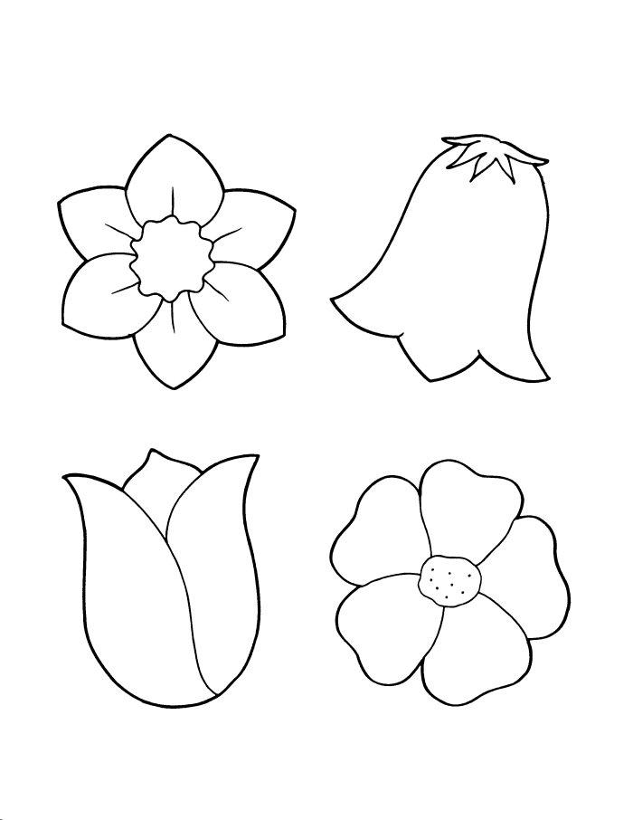 Картинки раскраски цветы тюльпаны 7