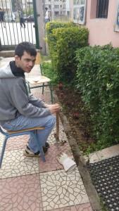 φυτα δήμου (2)