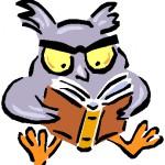 Λογότυπο της ομάδας του owl