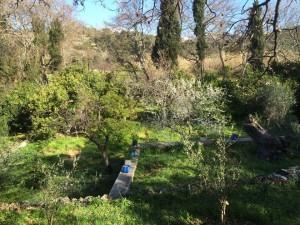 Το καταπράσινο τοπίο των Μελάνων