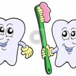 np15-teeth