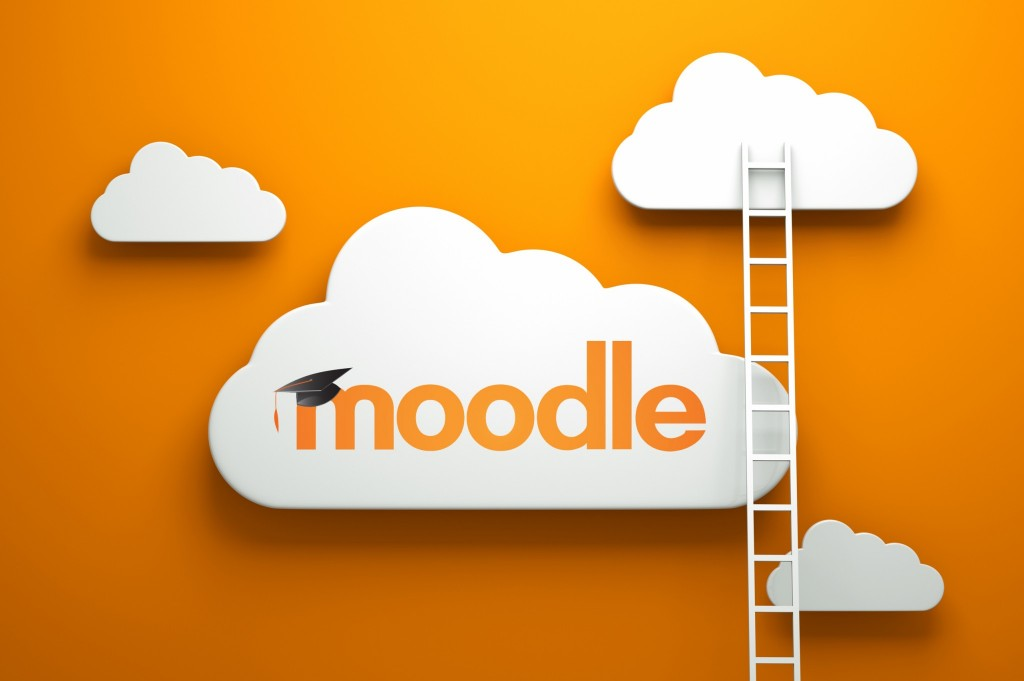 moodle-ladders1