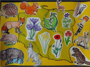 Ζώα Πολωνία