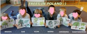 Φυτά Πολωνία
