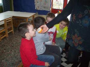 """Το φθινόπωρο ήρθε στην τάξη μας....παρατηρούμε φρούτα, φύλλα, λαχανικά και ότι σχετικό με το """"Φθινόπωρο"""" έχουμε φέρει απο το σπίτι μας! Γευόμαστε, μυρίζουμε και συζητάμε...."""