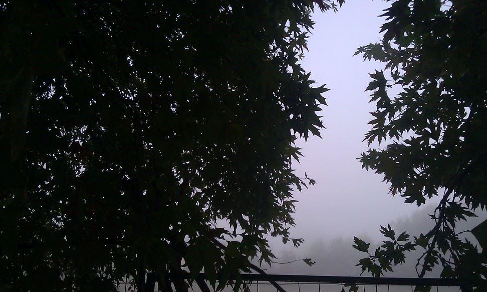 Τοπίο στην ομίχλη πέρα από τον μεγάλο πλάτανο στο γήπεδο της αυλής του σχολείου