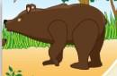 Η Ζωή της αρκουδίτσας