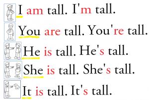 I am tall.