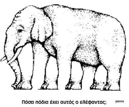 illusion5g.jpg