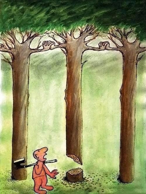 Η φύση αντιστέκεται…