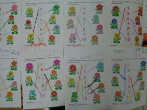 τα μαθηματικά των λουλουδιών