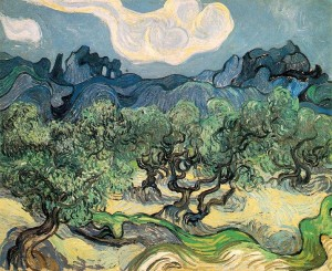 736px-Vincent_van_Gogh_(1853-1890)_-_The_Olive_Trees_(1889)
