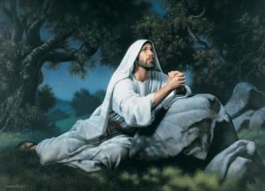 dewey-garden-olive-jesus-christ_1154677_inl
