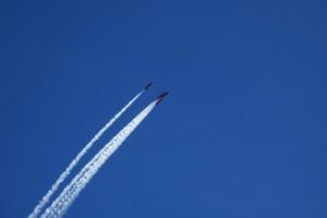 red arrowsDSC_8826