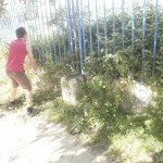 Ο κήπος πριν.
