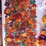 δείτε πόσο όμορφα είναι τα χρώματα του φθινοπώρου!