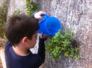 Ποτίζουμε με το κανατάκι για να κάνουμε οικονομία στο νερό. Ποτέ με το λάστιχο. Ο κήπος μας έχει και κρεμαστές γλάστρες!