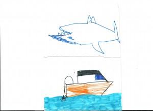Εμπνευσμένοι από τα ψάρια σχεδιάζουμε το αεροδυναμικό σχήμα των σκαφών