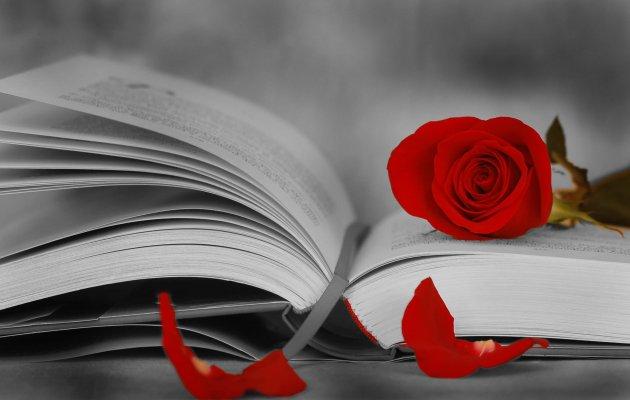 Image result for ημέρα των ροδων και των βιβλιων