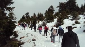 Πεζοπορία στην ορεινή Κορινθία