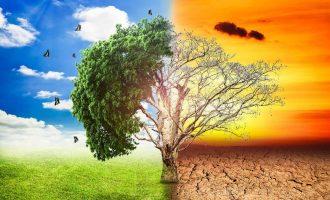 Το blog της Περιβαλλοντικής Εκπαίδευσης στο σχολείο μας