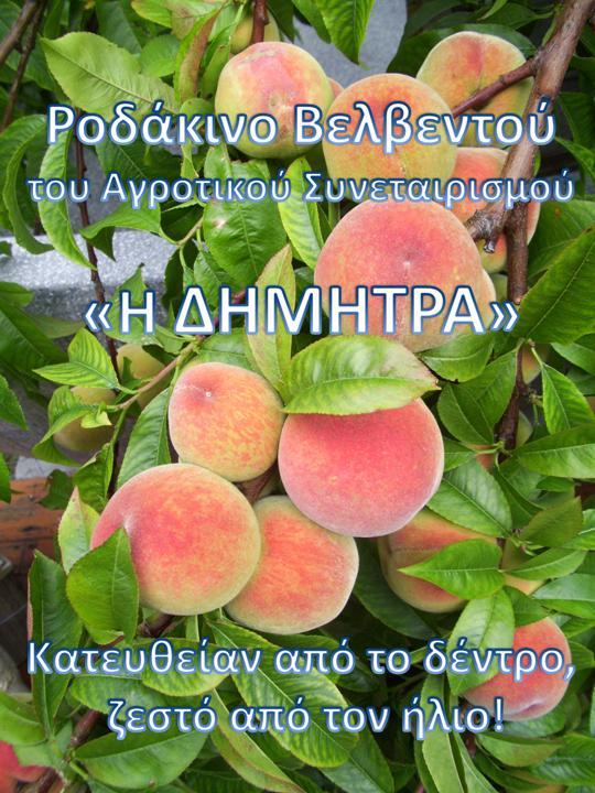 Αφίσα 4