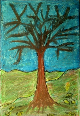 trees seaso 004